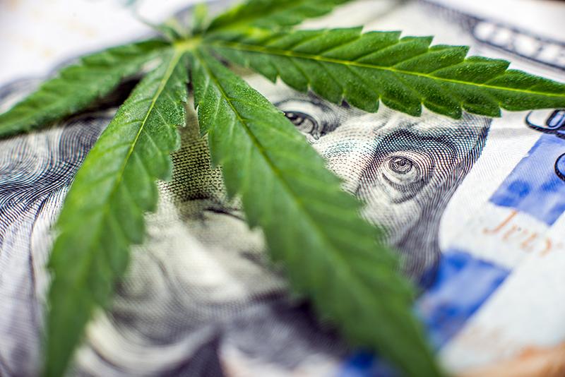 San Diego Marijuana Legalization